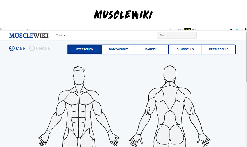 MuscleWiki